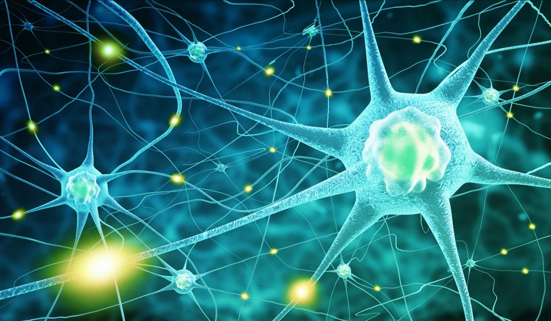 neurotransmitters_1400x.progressive