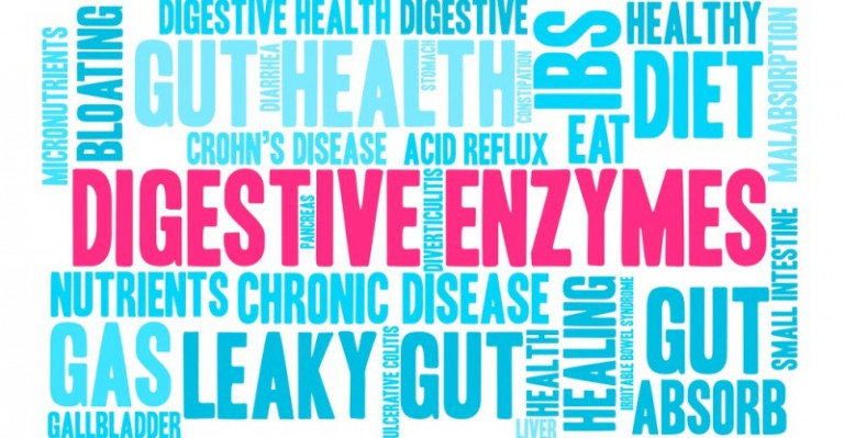 Digestive-Enzymes