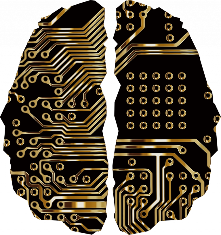 RF Brain wiring brain-3717690_1280